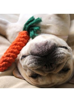 2×Carrot Biting Rope Pet Puppy Dog Chew Knot Toy Cotton Braided Bone Colorful Rope